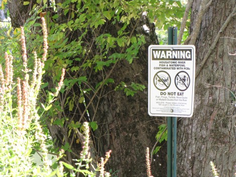 A sign posted by the banks of woods Pond warns against eating fish or wildlife because of PCB pollution.