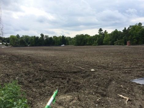 The entire 8-acre pace has now been cleared and the dioxins permeating the soil are being neutralized by a bioremediation process.