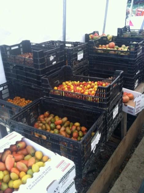 Farm Girl Farm heirloom tomato sort 'n pack.