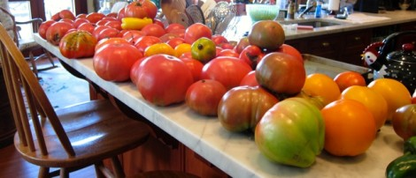 EATING IN SEASON: Tomato heaven