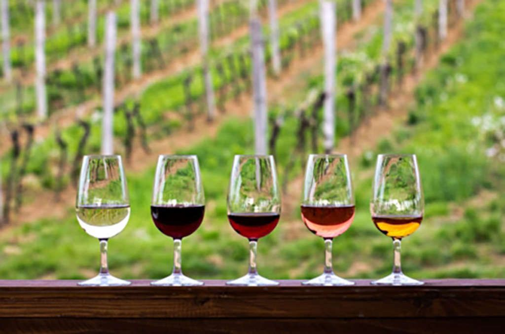 Discovering Natural Wines