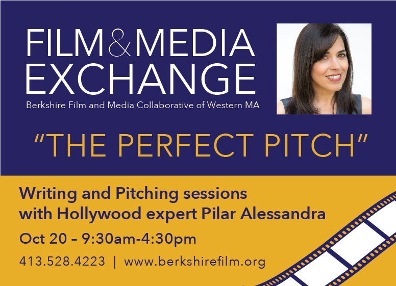 WMass Film and Media Exchange: The Perfect Pitch